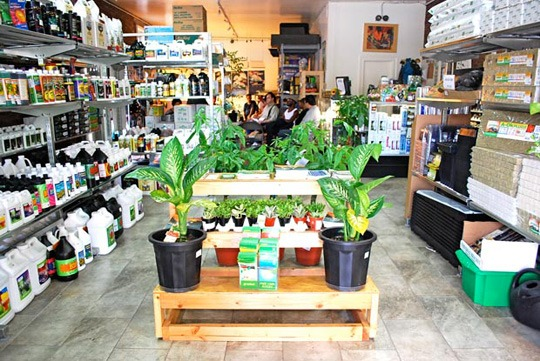 discount hydroponic stores where to buy local supplies. Black Bedroom Furniture Sets. Home Design Ideas