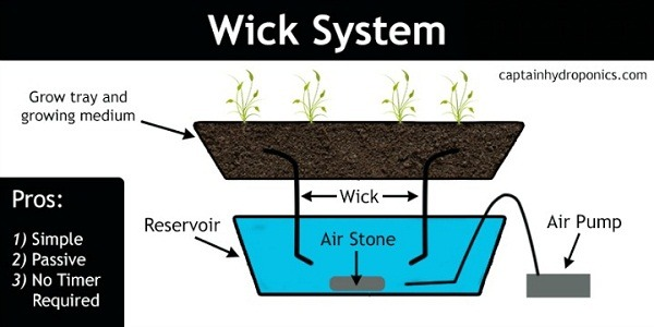 how to make a plant wick
