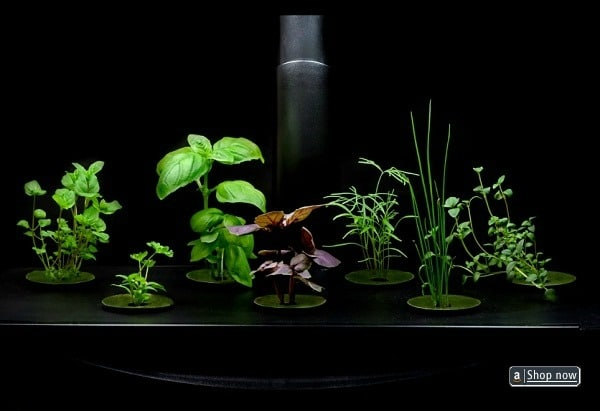 Hydroponic lighting system kit