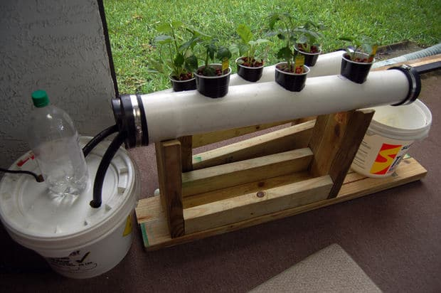 Small NFT Hydroponic System | Amazing Hydroponic Systems For Indoor Gardening