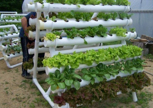 how to diy pvc hydroponics gardening for awesome results