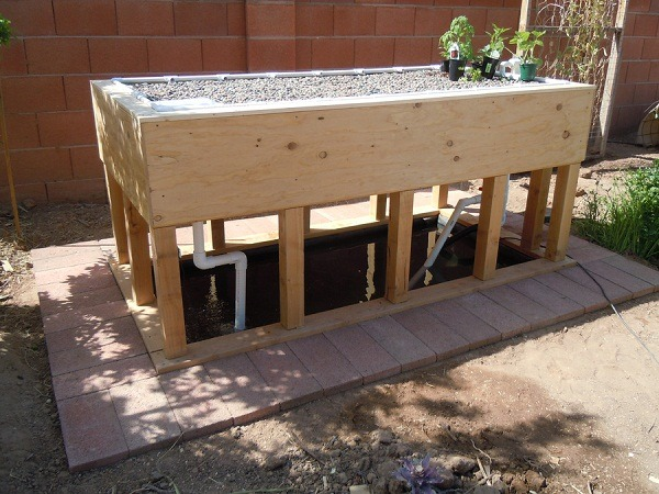 How To Build A Grow Box For Home Gardening