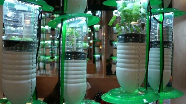 Excellent Hydroponic Lighting Guide You Need To Read
