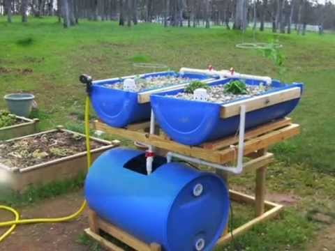 How to diy hydroponic grow bed easily best designs for How to grow hydro in a fish tank