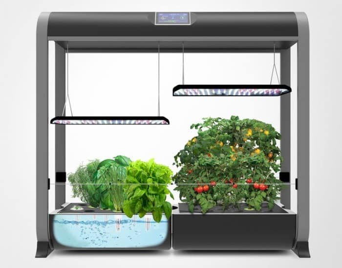 How To Set Up Your AeroGarden